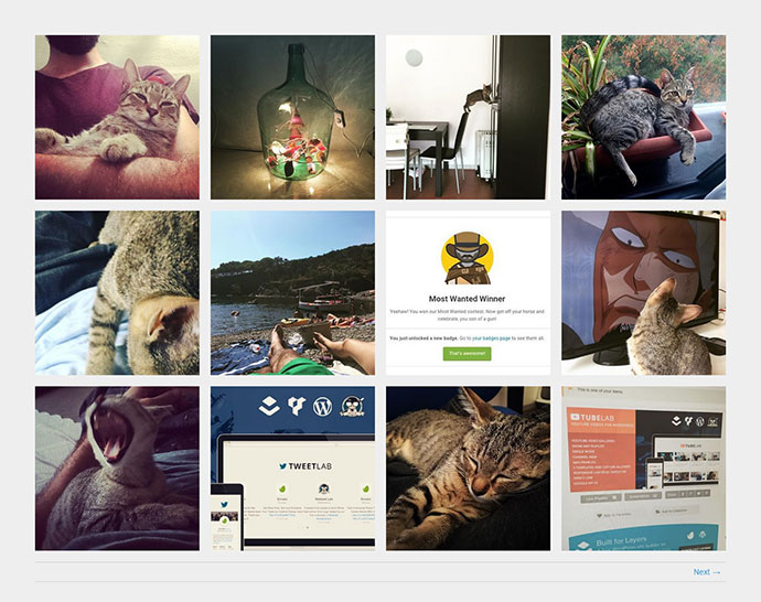 Instagram Photo & Video Gallery WordPress