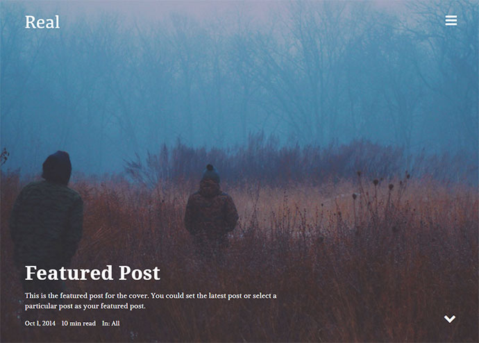 REAL - Responsive Blog WordPress Theme