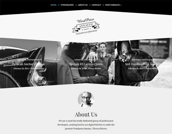 Annatto v2 - Clean and Elegant WordPress Theme