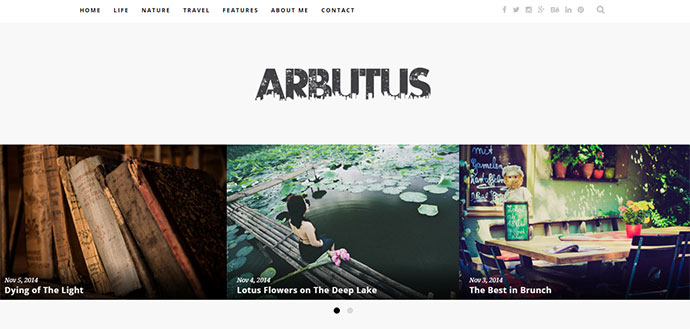 Arbutus - Responsive WordPress Blog Theme