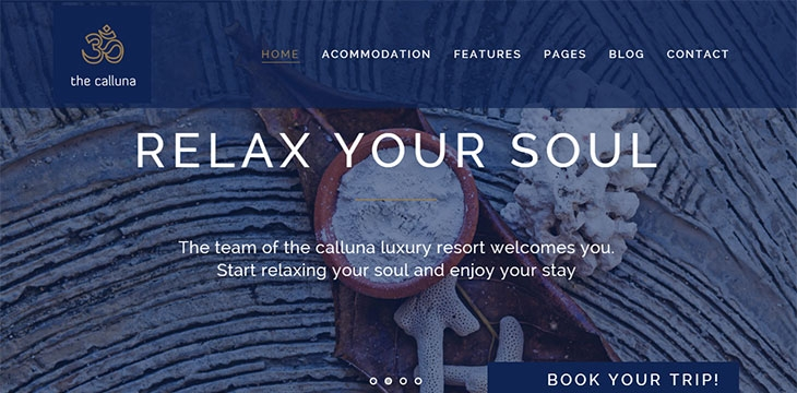 20 Best WordPress Themes For Resorts & Hotels 2019