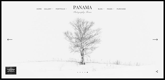 Photography Portfolio Theme
