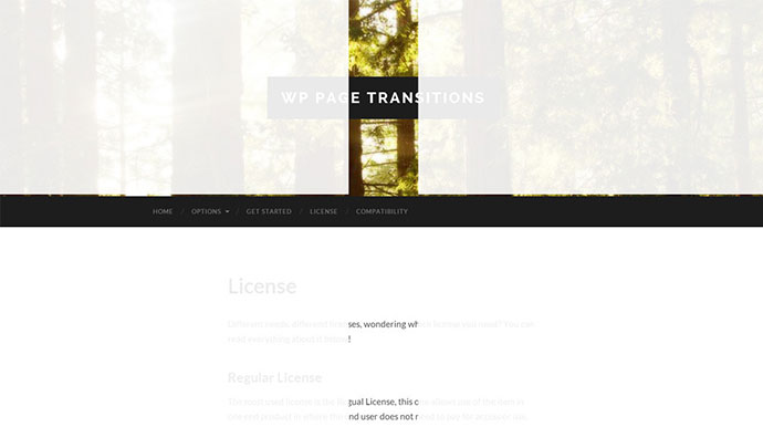 WP Page Transitions