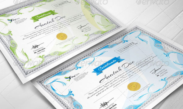 Modern Multipurpose Certificates v2
