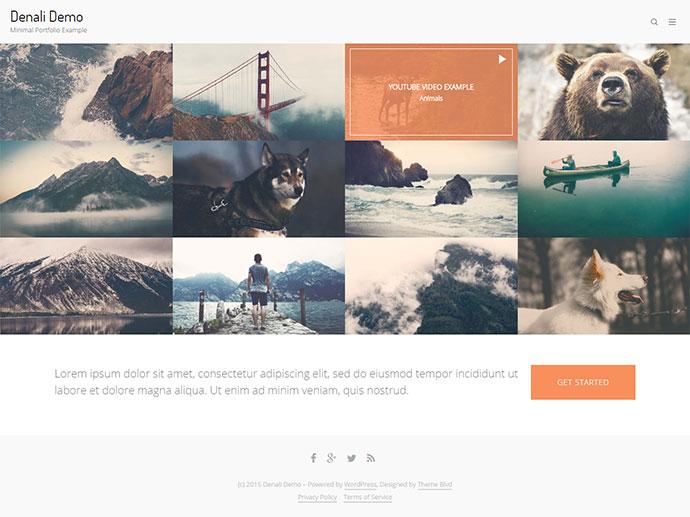 Denali - Responsive Multi-Purpose WordPress Theme