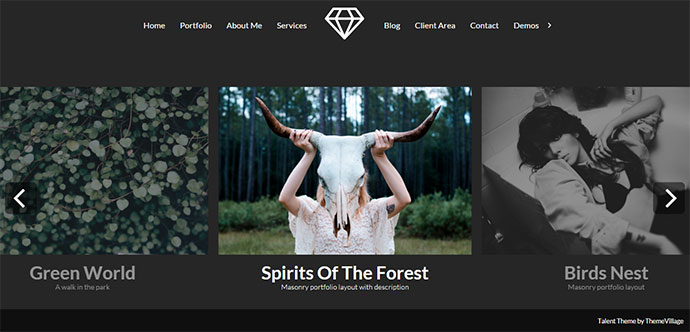 Talent - Horizontal Photography WordPress Theme