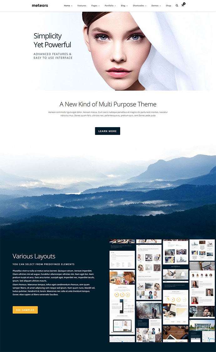 Business Multi-Purpose | Meteors Theme
