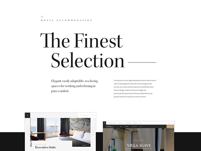 Adriatic Luxury Hotels — Case Study by Hrvoje Grubisic