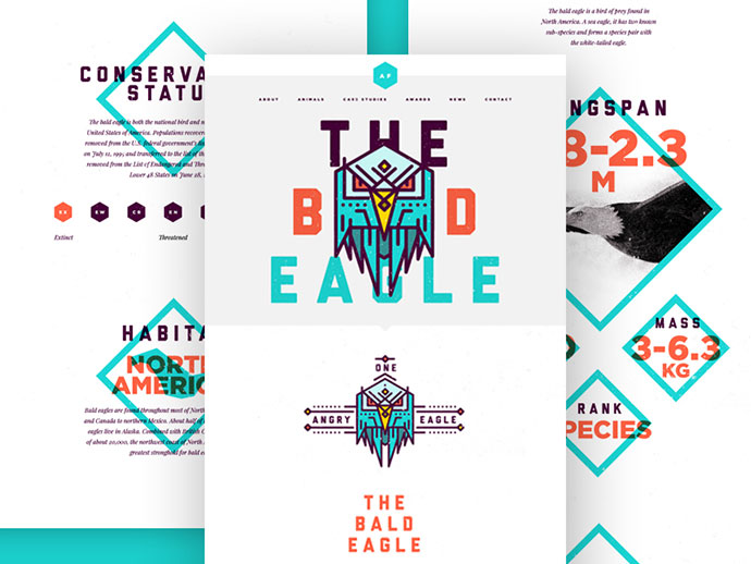 Bald Eagle Landing Page by Studio–JQ