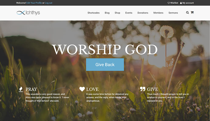 Ichthys - Church / Nonprofit / Charity WordPress Theme