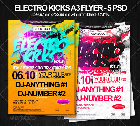 Electro Kicks A3 Party Flyer
