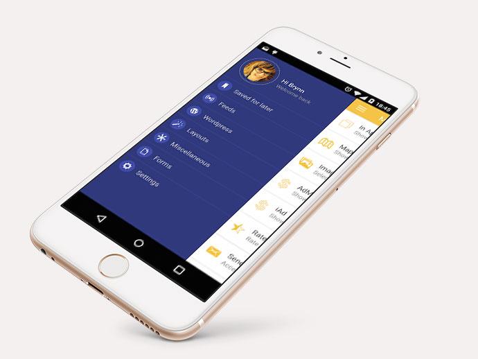 Ionic PhoneGap/Cordova Full Hybrid App