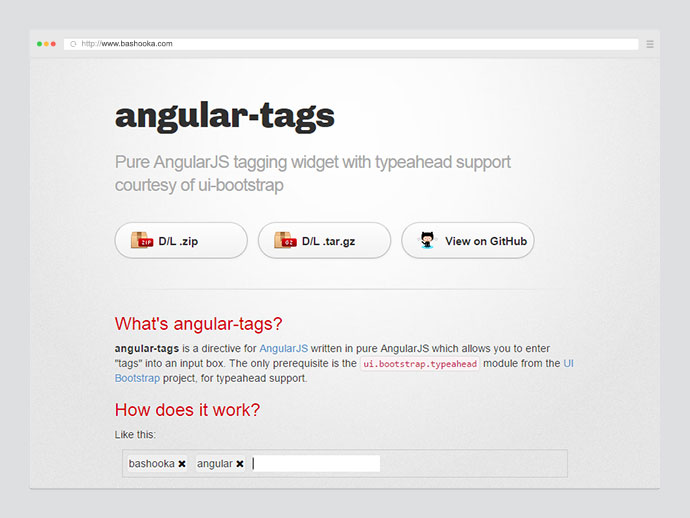 angular tags
