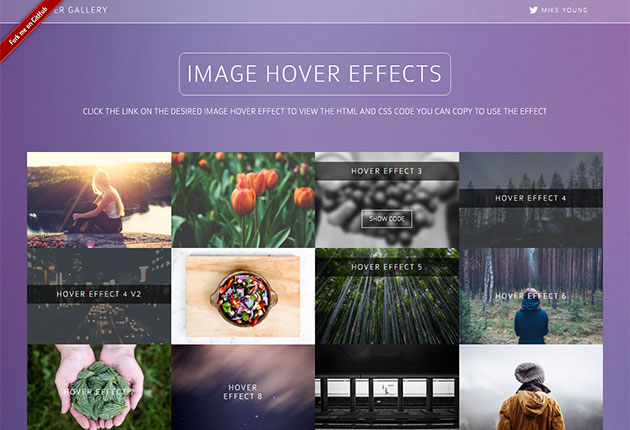 8 CSS Libraries For Adding Image Hover Effects – Bashooka