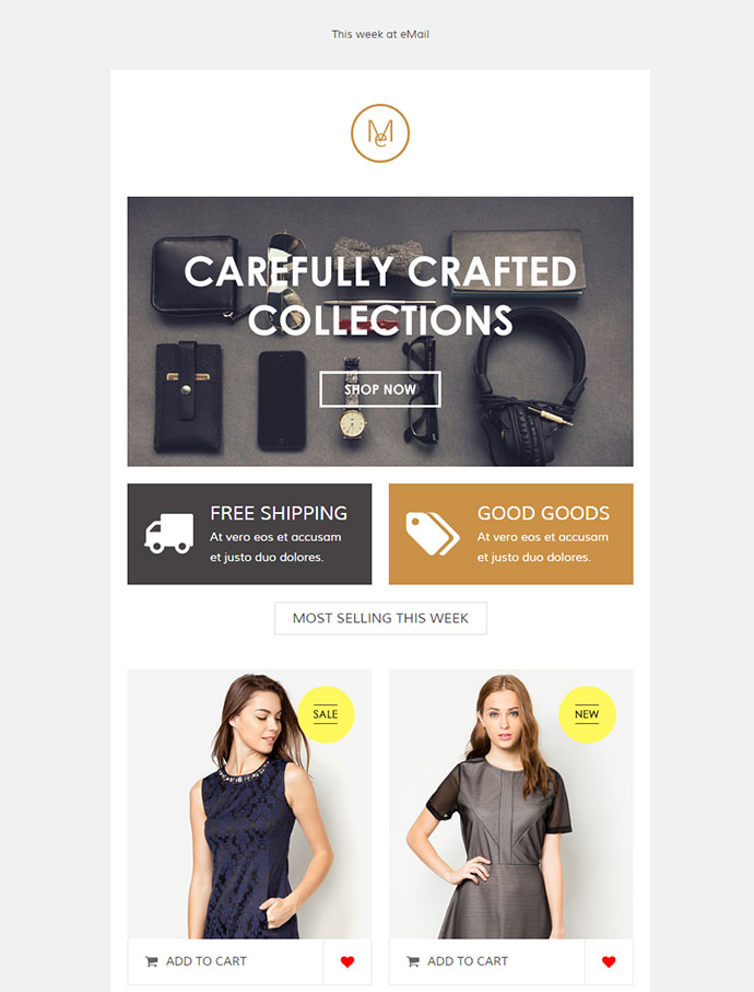 Email, eCommerce Email Template + Online Editor