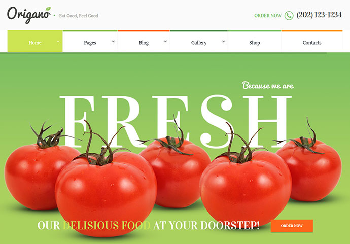 Origano - Organic Food & Eco Farm Theme