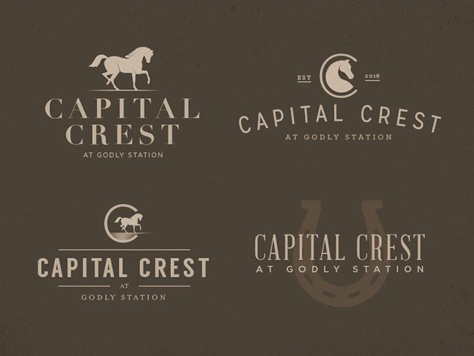 Capital Crest - Logos by Tyler Merritt