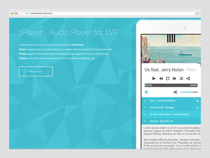 20 Best Wordpress Media Player Plugins – Bashooka