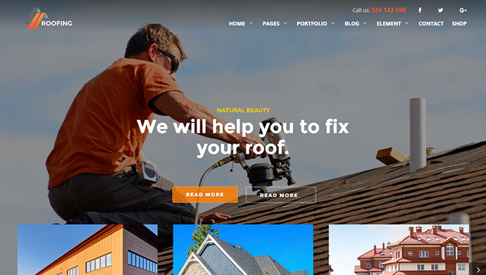 Roofing, Renovation & Repair Service