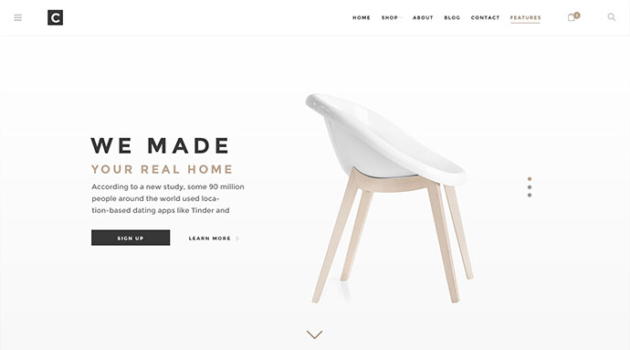 Chameleon Shop PSD Template