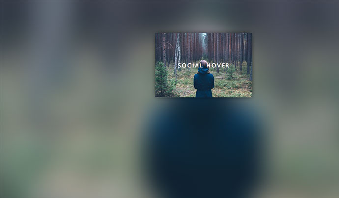 Social Icon Hover Effect