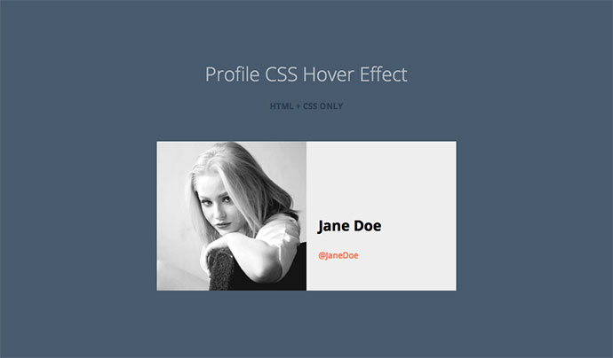 Profile CSS Hover Effect