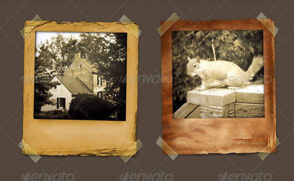Vintage Polaroid Frames