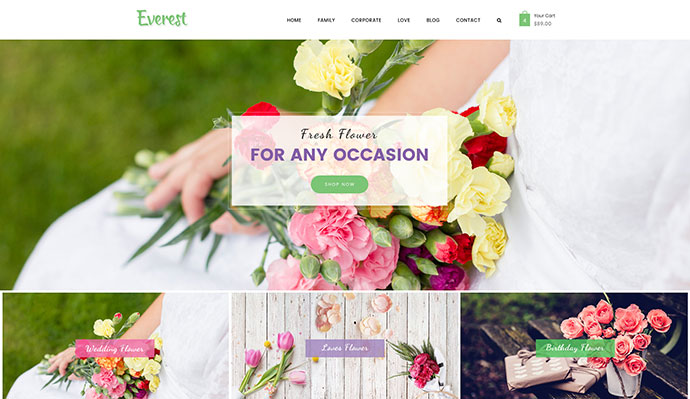 Everest - Multi-Purpose eCommerce Business PSD