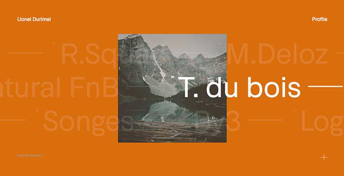 Lionel Durimel - Portfolio
