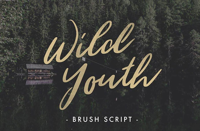 WILD YOUTH - FREE FONT