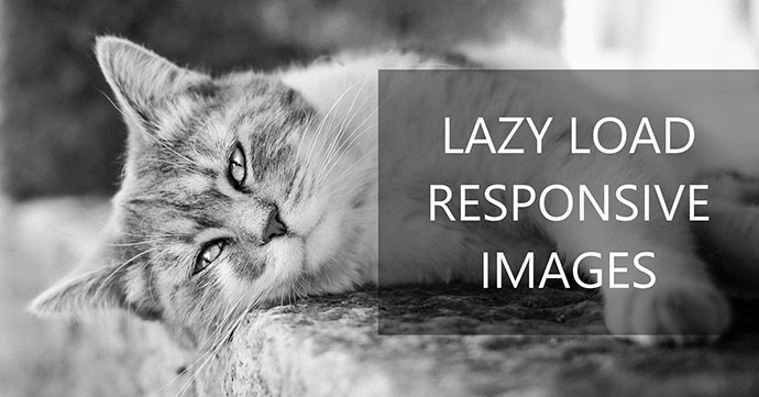 Lazy load responsive images