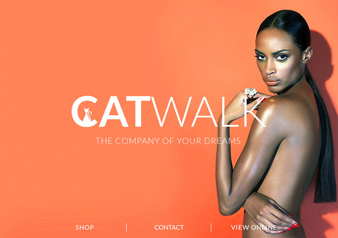 Catwalk - Fashion Email + Builder/Editor Access