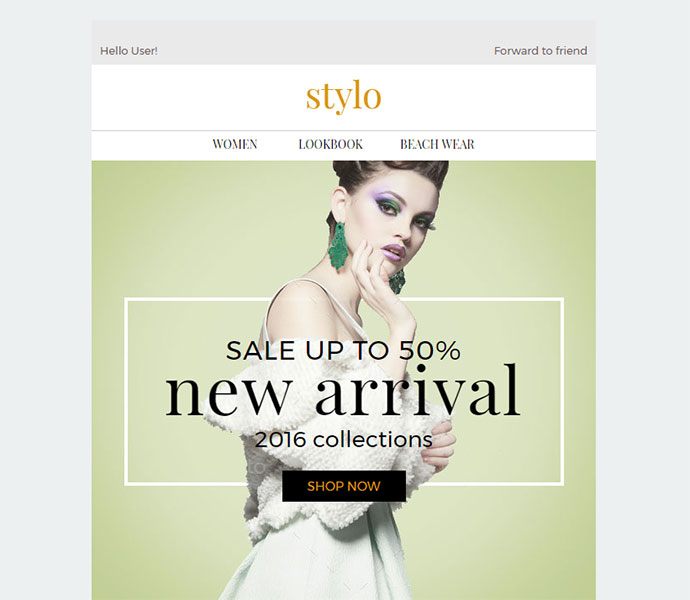 Stylo - Ecommerce Newsletter + Builder Access