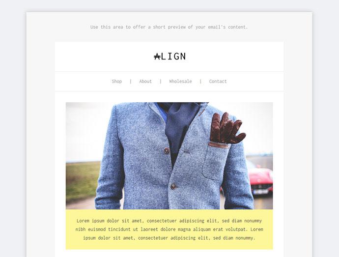 Align, Minimaist Fashion Email + Builder Access