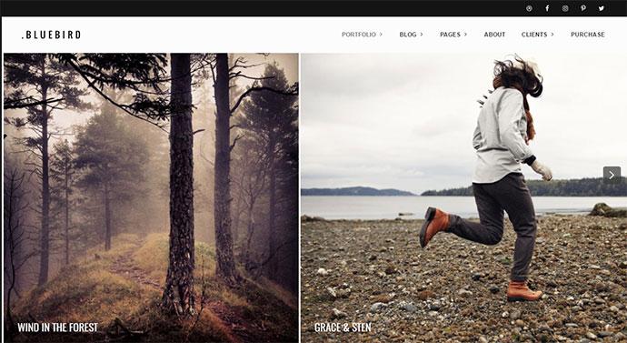 Bluebird - Design for Professional Photographers