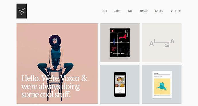 Voxco - Portfolio Theme for Creative People