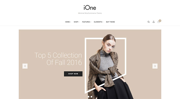 iOne - Minimal Responsive WooCommerce Theme