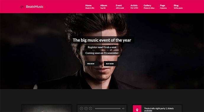 VibeMusic - Musicians, Deejays, Singers, Bands WordPress Theme