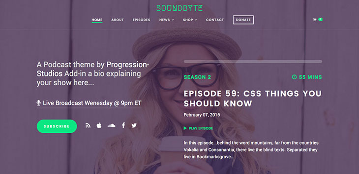 20+ Superb Podcast & Radio WordPress Themes 2021