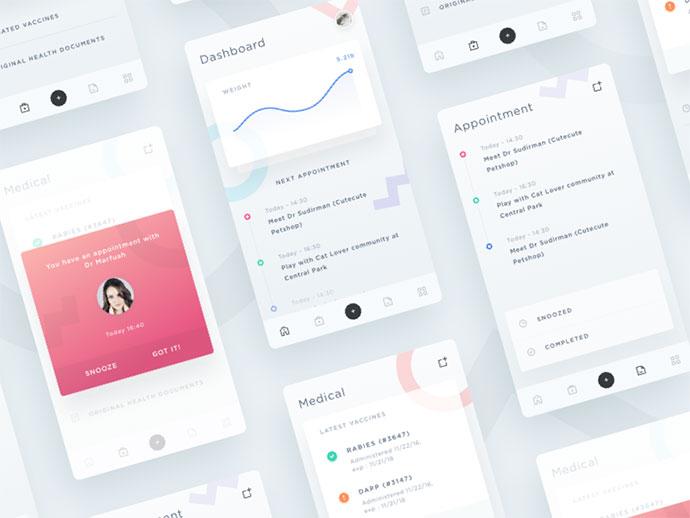 Pet Tracker App Concept