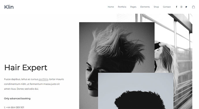 Klin - Multipurpose Portfolio Theme