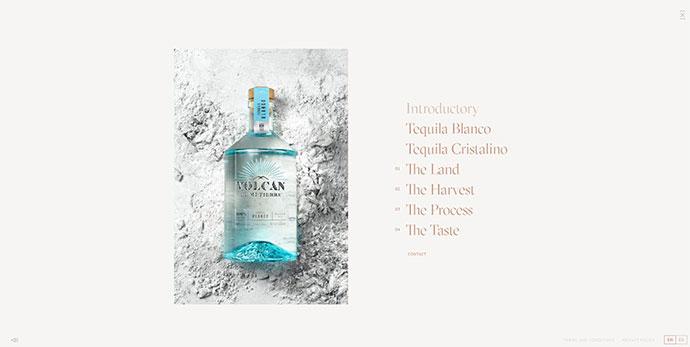 Volcan De Mi Tierra Tequila