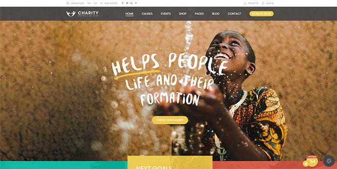 Charity Foundation - Charity Hub WP Theme