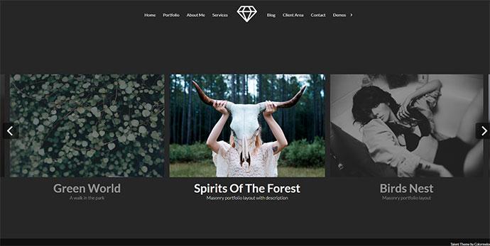 Talent - Horizontal Photography WordPress Theme