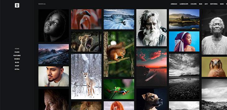 20 Best Dark Photography Portfolio WordPress Themes