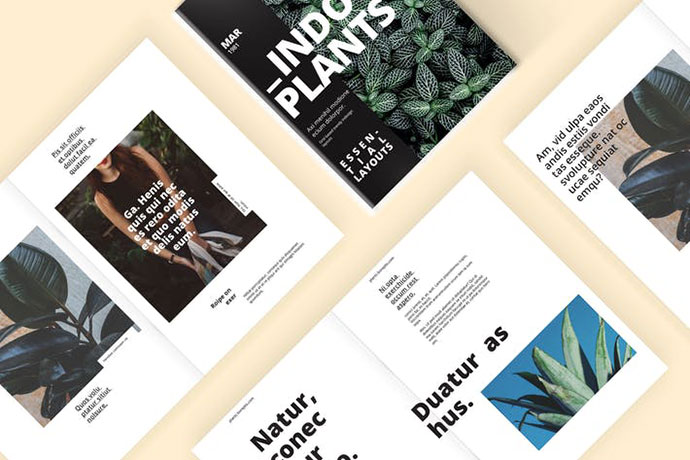 Indoor Plants - A Magazine Template