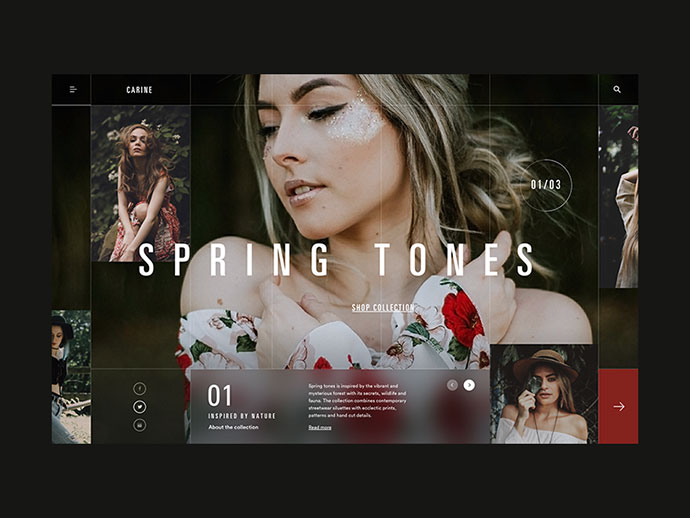Carine fashion store homepage concept