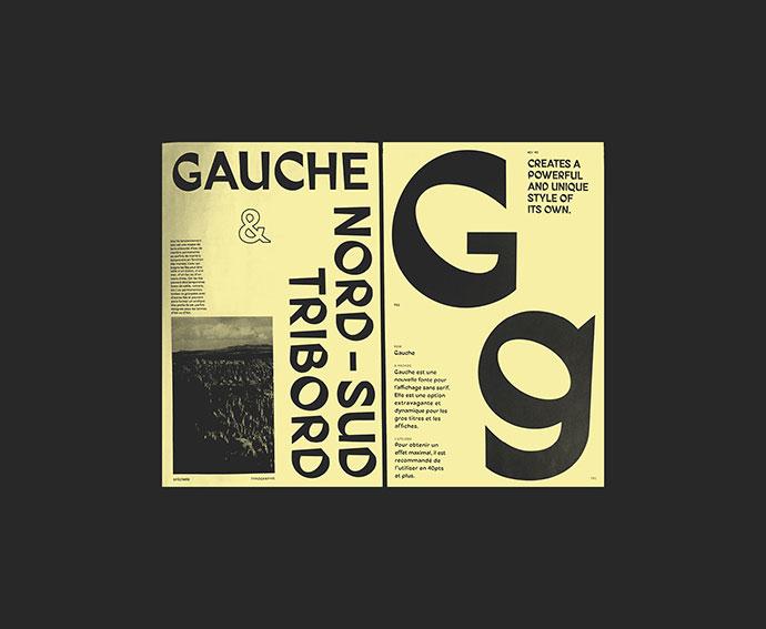 Gauche Type Specimen
