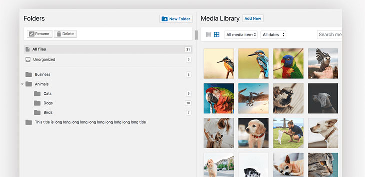 21 File Management Solutions For WordPress