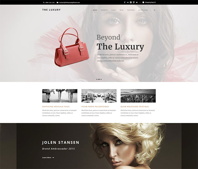 The Luxury - Dark/Light Responsive WordPress Theme